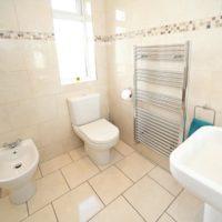 Flush your Bathroom Troubles Away